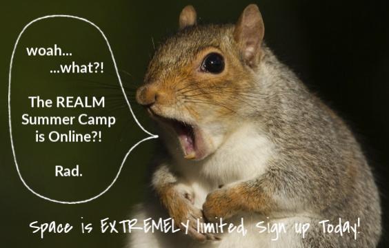 Summer Camp (Online)